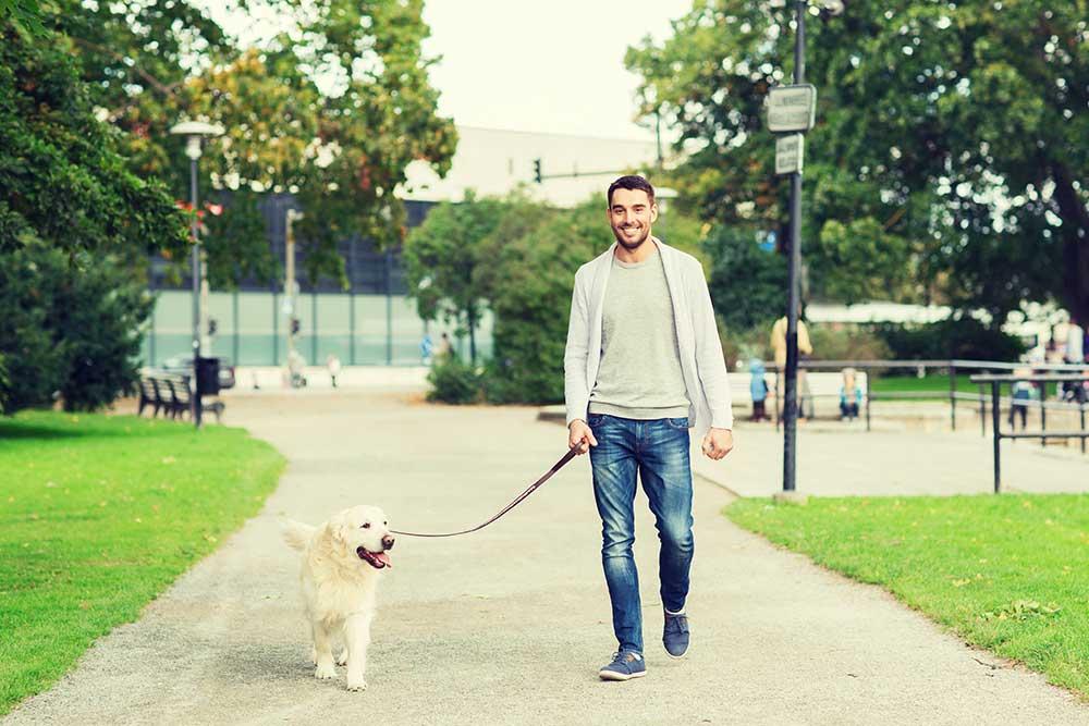 happy man with labrador